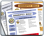 Subscribe via RSS feed to the Bankruptcy Bugle